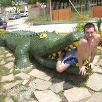 Голодный крокодил