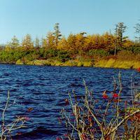 Сахалинская осень.
