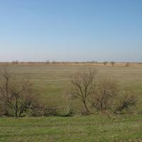 Степь 1 (р. Дагестан)