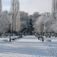 Зимний Таганрог